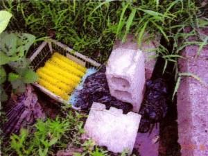 農業用ストレート使用例